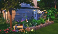 Rosehip Vege Garden