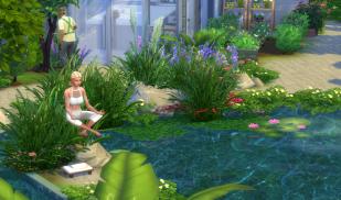 hidden-spring-meditation-2
