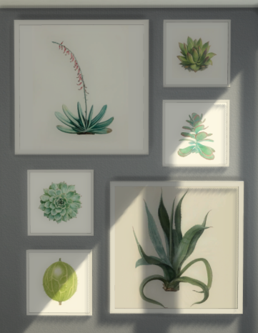 Green Plant Pictures