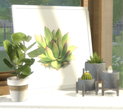 Plant Light Dark Grey