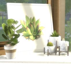 Plant Light Marble